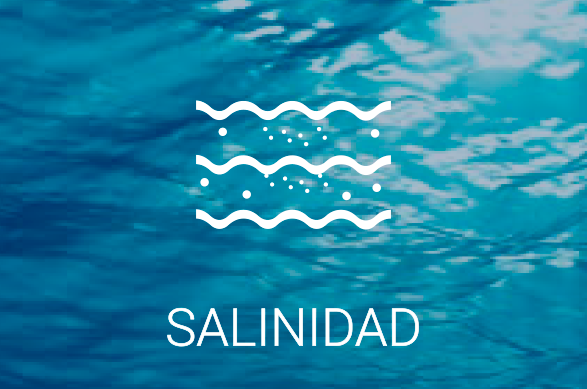 Salinidad